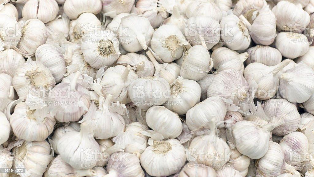 Many loose heads of white purple garlic for sale stock photo
