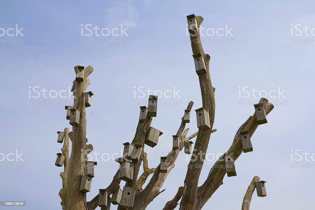 Many nesting boxes royalty-free stock photo