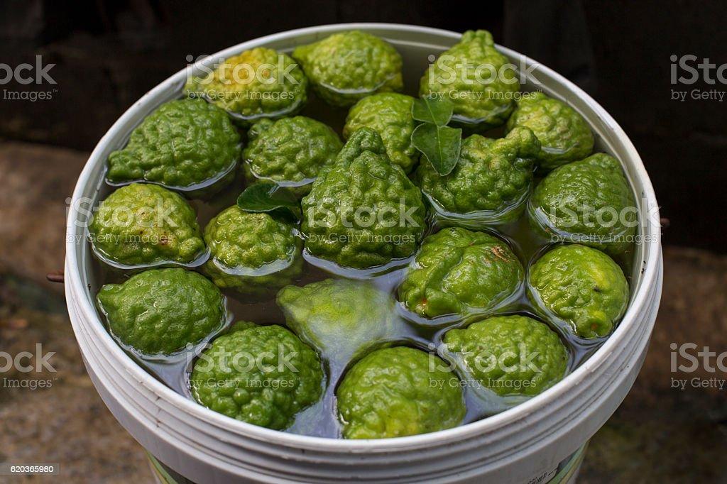 Many of bergamot foto de stock royalty-free