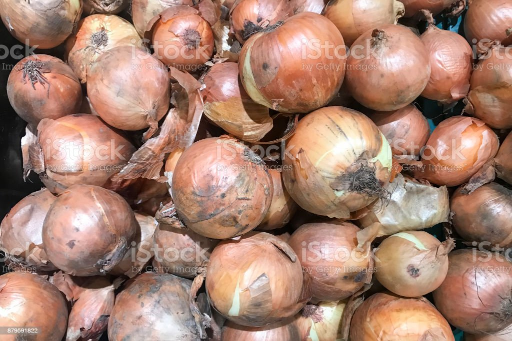 Many onions for cooking. stock photo