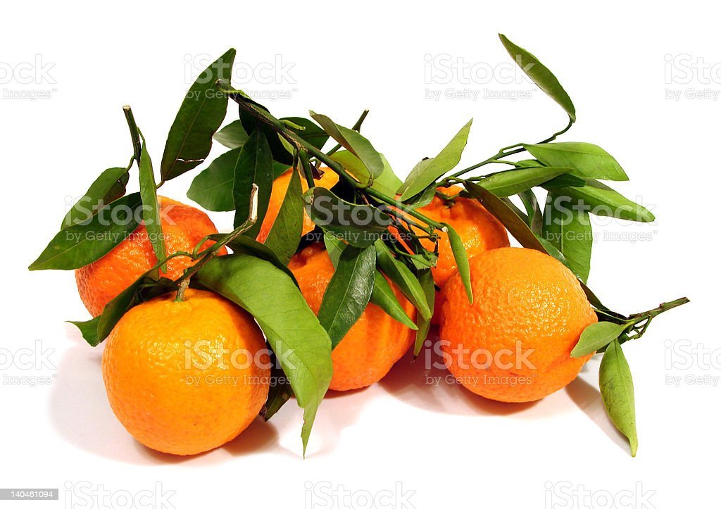 many orange tangerine with green leaves over white background royalty-free stock photo