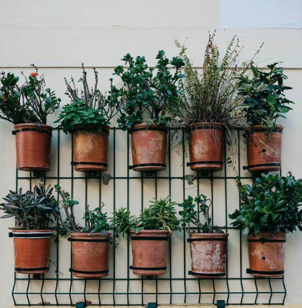 房子外牆上的許多花盆裝飾 - 垂直構圖 個照片及圖片檔