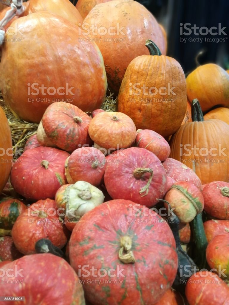 Many pumpkins on a farmers market stock photo