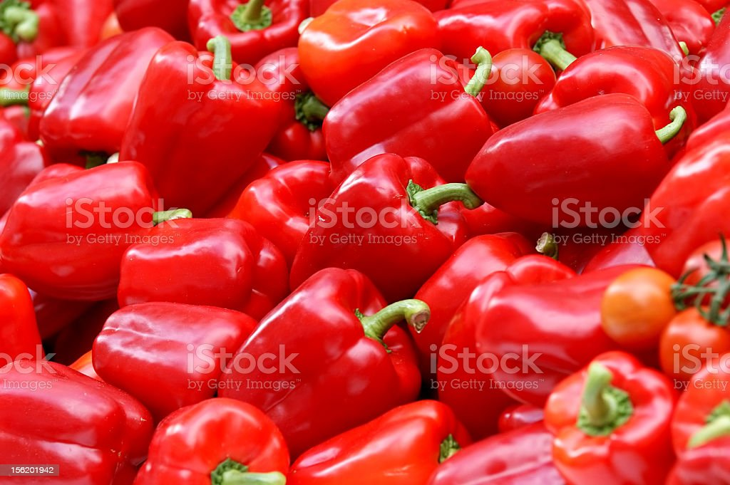 Many red bell peppers laying together  stock photo