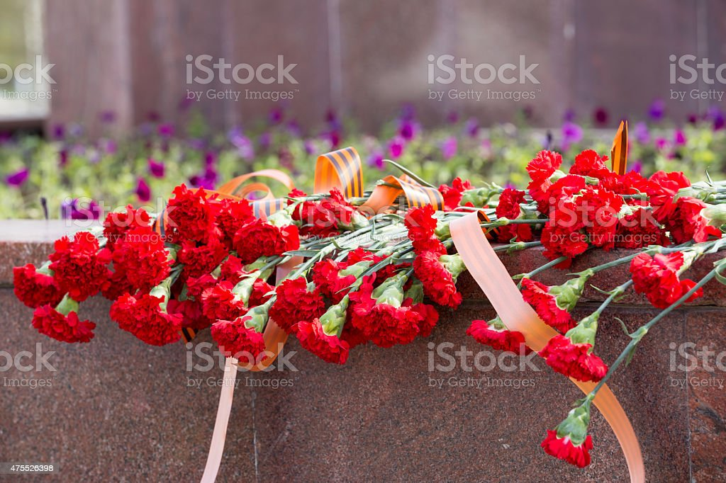 many red carnations with St. George ribbon on memorial stock photo