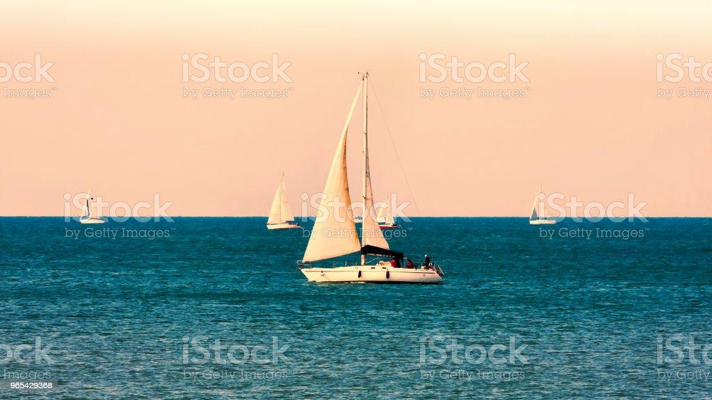 Many sailing boats in regatta at dawn zbiór zdjęć royalty-free