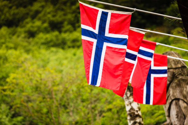 Many small Norway flags in row outdoor - fotografia de stock