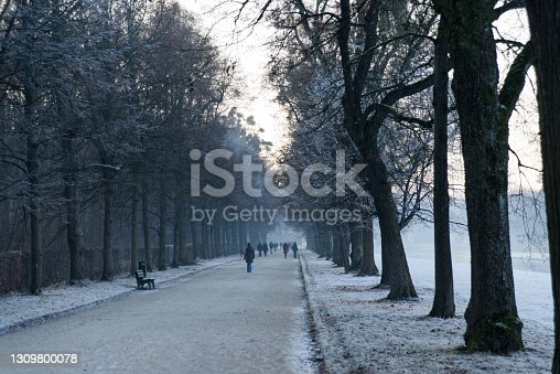 istock Many unnamed people walking on a wintry park alley 1309800078