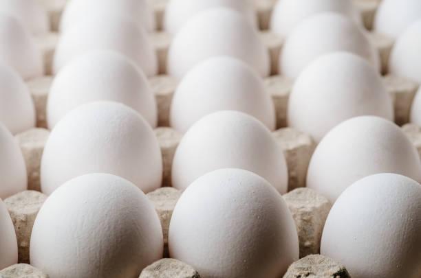 veel witte kip eieren voedsel in tray box - chicken bird in box stockfoto's en -beelden