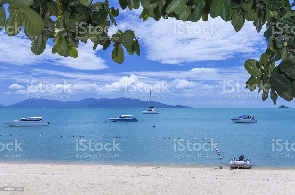 many yacht speed boat on the sea with mountain background royalty-free stock photo