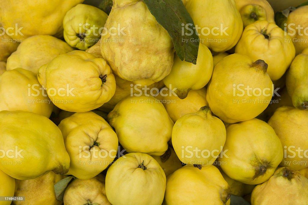 Viele gelbe quinces an einem Marktstand – Foto