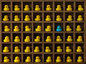 Many yellow rubber ducks sit in wooden pigeon hole compartments  with one compartment with a different blue duck Concept image regarding individuality, standing out from the crowd etc.