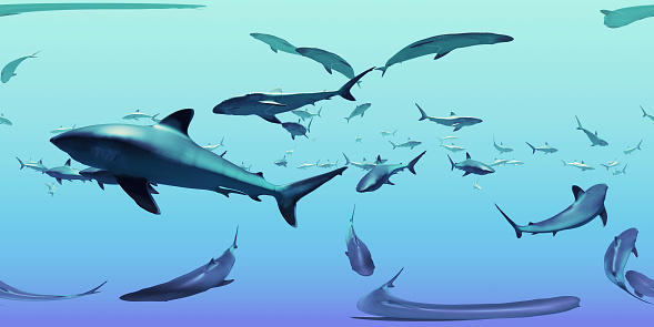 483422527 istock photo HDRI map, spherical environment panorama nature background, group of silvertip sharks swimming in the ocean (3d equirectangular illustration) 1025153680