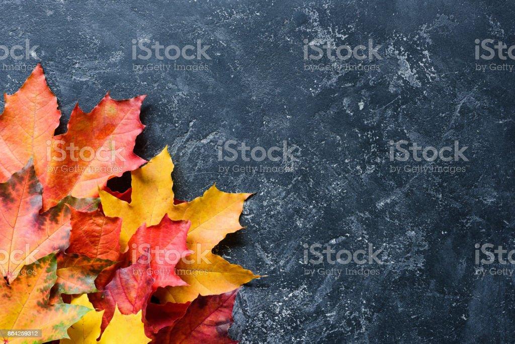 Maple leaf frame on stone background royalty-free stock photo