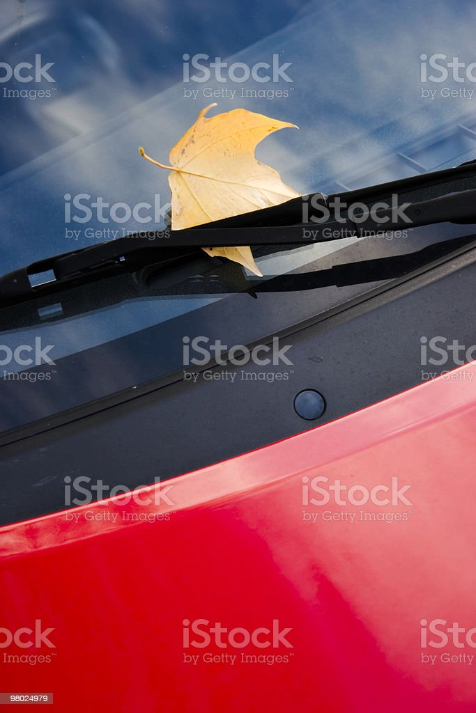 Maple Leaf on Auto Window royalty-free stock photo