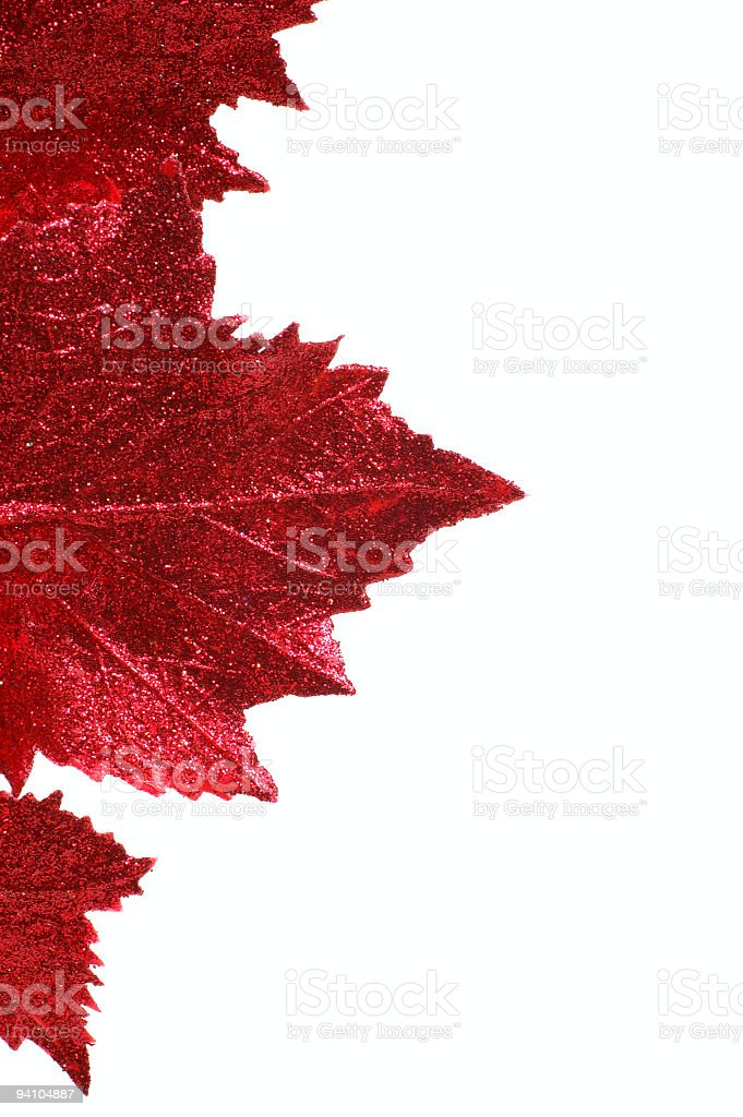 Maple Leaf Ornament royalty-free stock photo