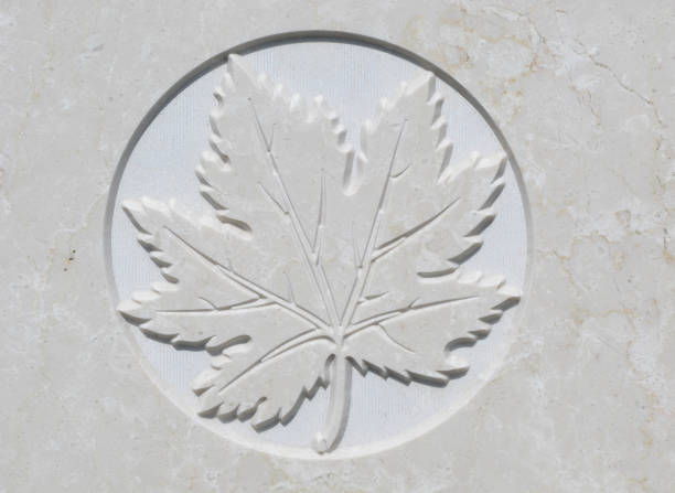 maple leaf - war memorial stock pictures, royalty-free photos & images