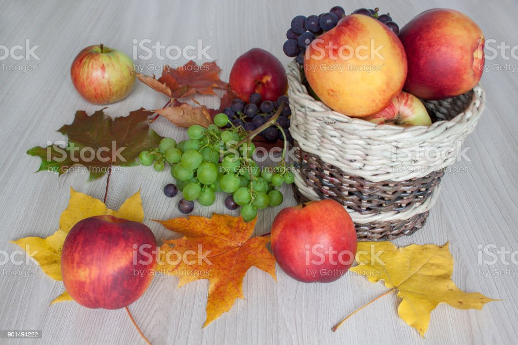 Maple Leafs Nectarine Apples Grapes And Other Gifts Of Nature Stock Photo Download Image Now Istock