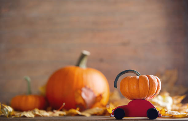 maple leaves and pumpkins with little cart toy stock photo