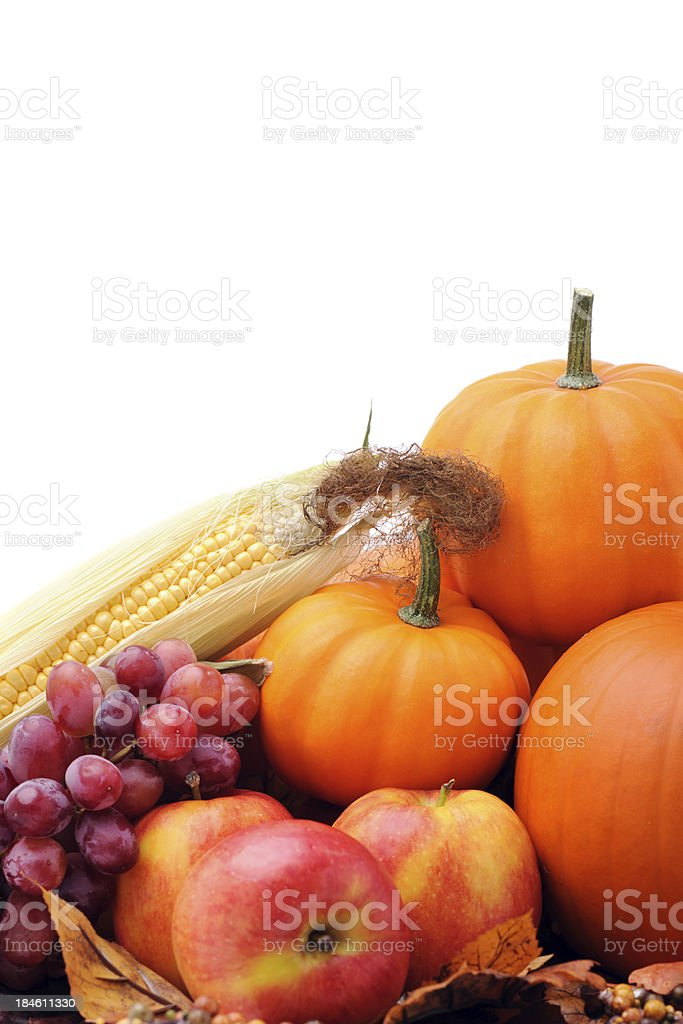 Maple tree and pumpkins royalty-free stock photo