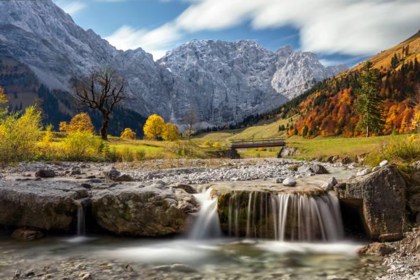 Ahornbäume am Ahornboden, Karwendelgebirge, Tirol, Österreich – Foto