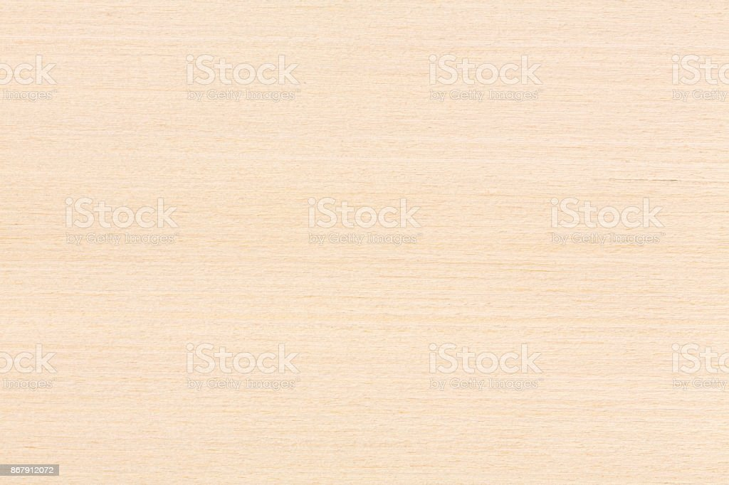 Maple wood, natural backghound stock photo