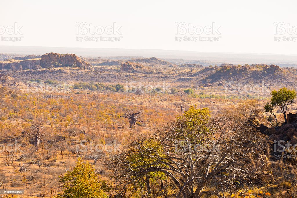 Mapungubwe National Park, landscape, South Africa stock photo