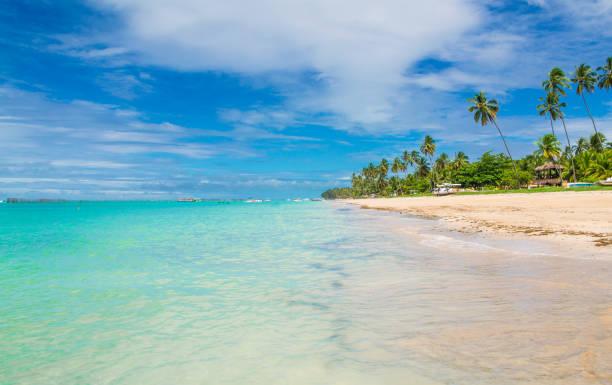 maragogi strand, brasilien - brasilien stock-fotos und bilder