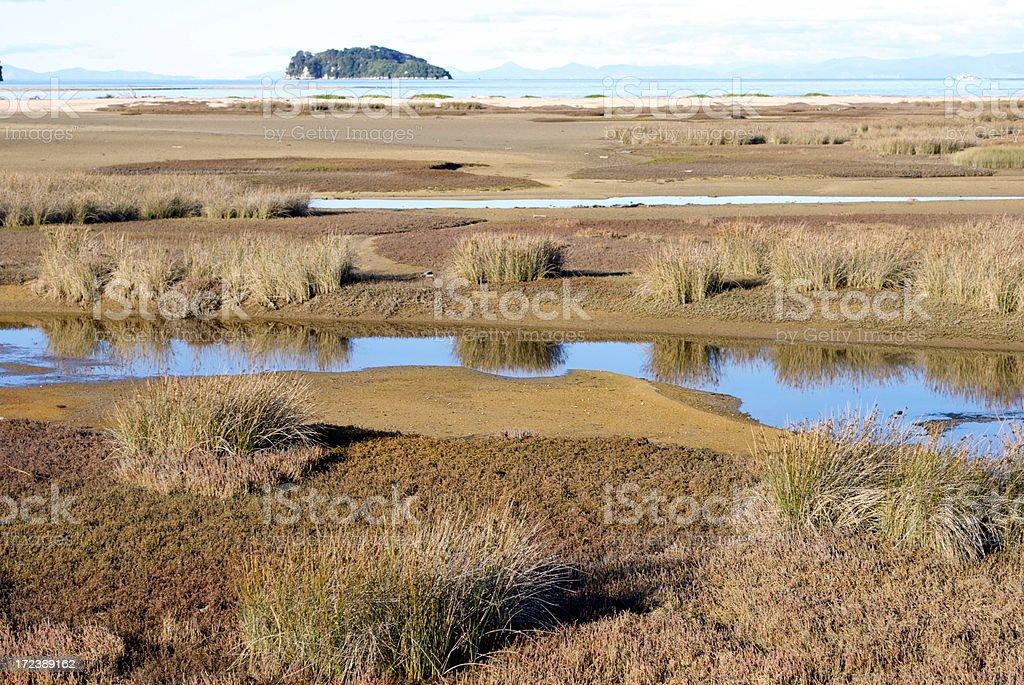 Marahau Wetlands, Abel Tasman, Nelson Region, New Zealand royalty-free stock photo