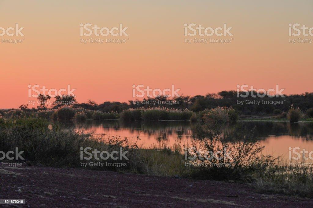 Marataba Wildreservat - Südafrika – Foto