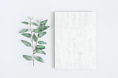 Marble paper blank, eucalyptus branches on pastel gray background. Flat lay, top view, copy space