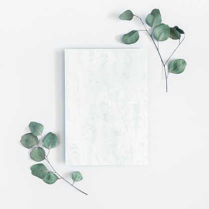 istock Marble paper blank, eucalyptus branches on pastel gray background. Flat lay, top view, copy space, square 1023934236
