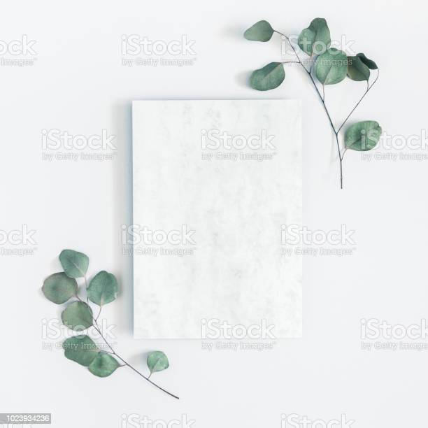 Marble paper blank eucalyptus branches on pastel gray background flat picture id1023934236?b=1&k=6&m=1023934236&s=612x612&h=xzmizwrhupktsix0qkl3n1cpqtzqyfparqlaqooa5we=