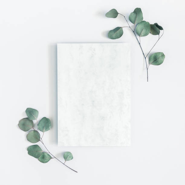 Marble paper blank eucalyptus branches on pastel gray background flat picture id1023934236?b=1&k=6&m=1023934236&s=612x612&w=0&h=7wc au3 qah392w9hiv0zj2shc dgaitapdf53xia6m=