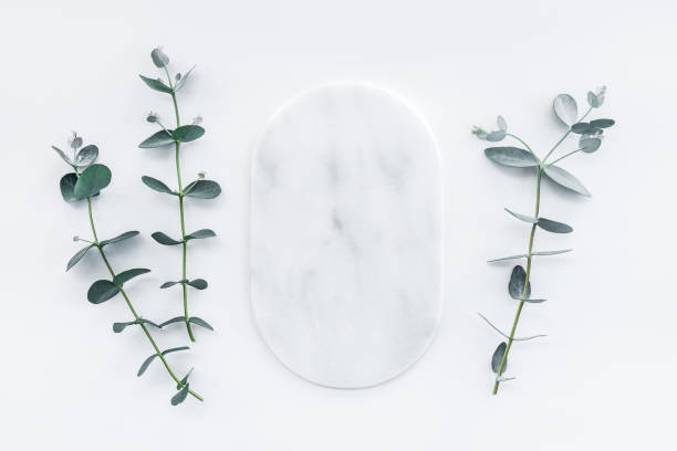 Marble plate and fresh eucalyptus branches stock photo
