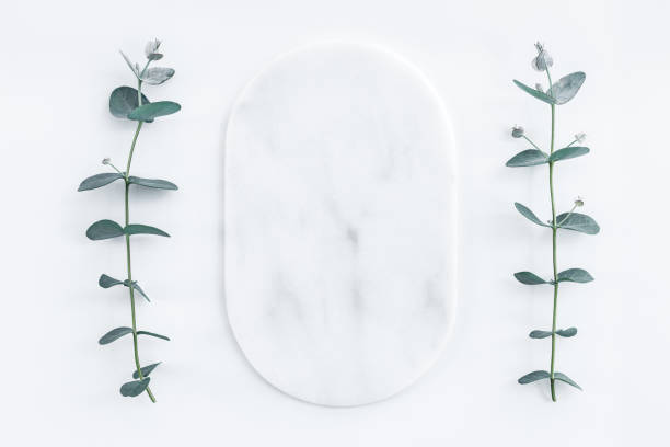Marble plate framed by eucalyptus branches stock photo