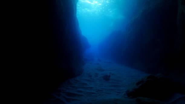 Marble Ray at giant undersea canyon, Ogasawara, Japan stock photo