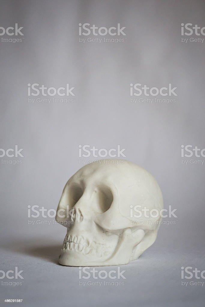 Marble skeleton head from Carrara stock photo