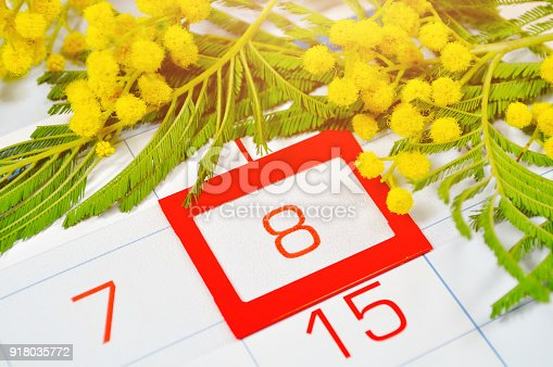 istock 8 March- mimosa flowers over the calendar with 8 March 918035772