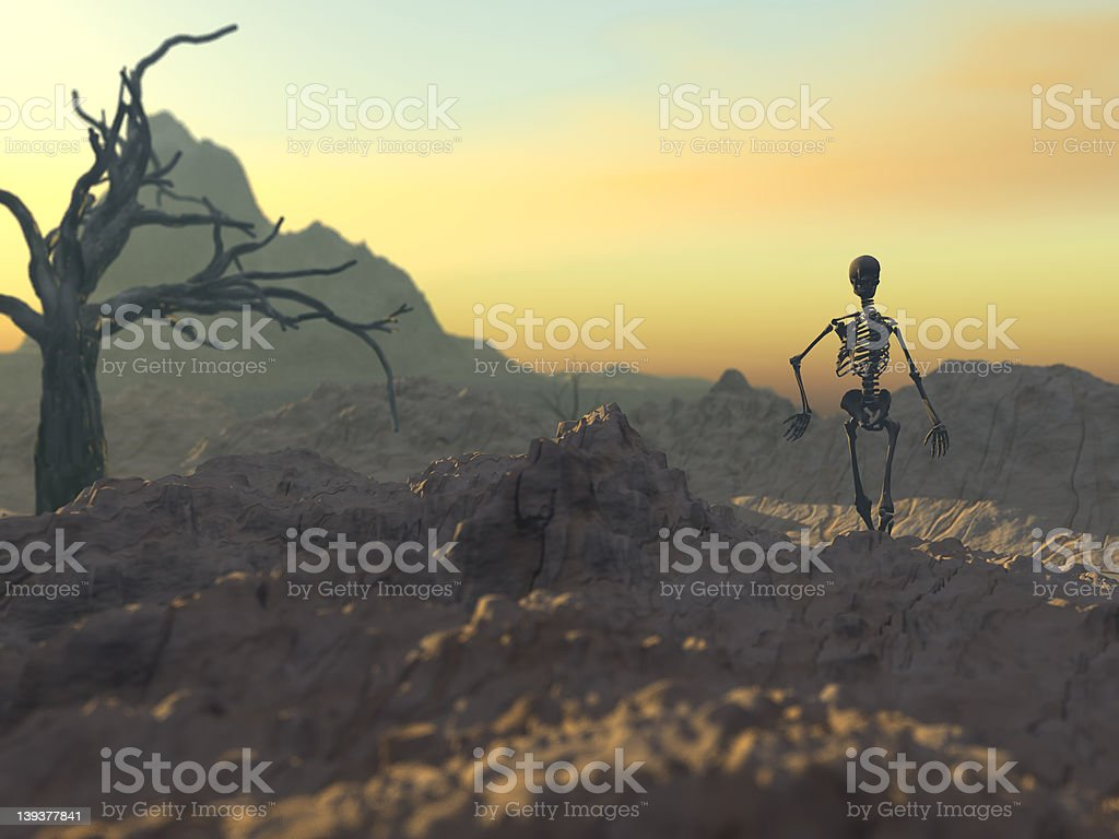 March of a skelleton stock photo