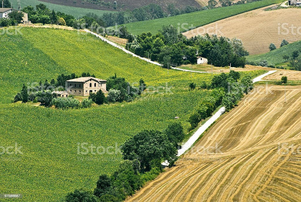 Marche - Landscape at summer royalty-free stock photo
