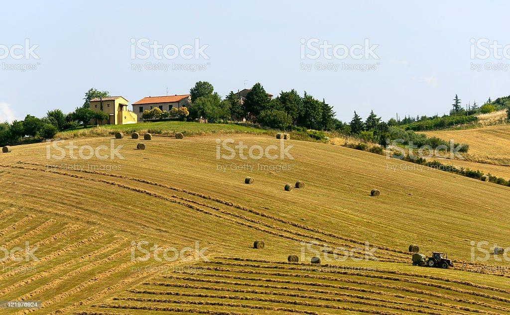 Marches (Italy) - Landscape at summer, farm royalty-free stock photo