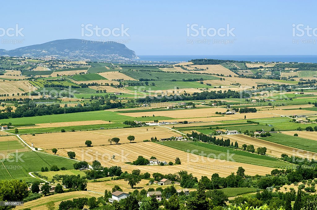 Marches (Italy) - Landscape at summer: fields and Adriatic Sea royalty-free stock photo
