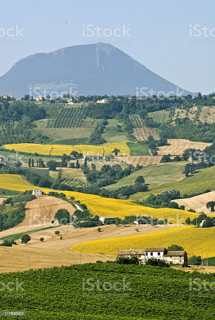 Marches (Italy) - Landscape near Cingoli royalty-free stock photo