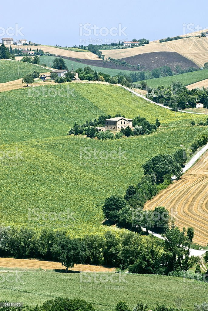 Marches (Italy) - Rural landscape at summer with farmhouse royalty-free stock photo