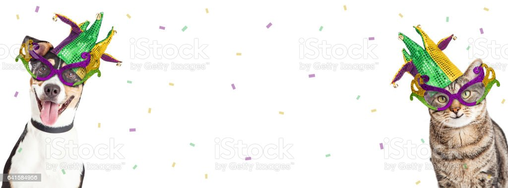 Mardi Gras Dog and Cat Horizontal Banner stock photo