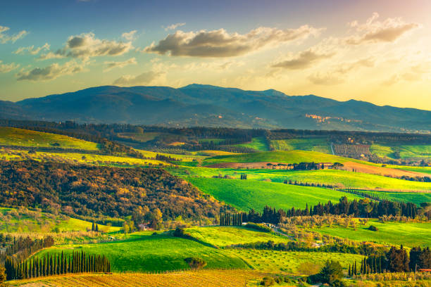 Maremma countryside and Magona forest. Bibbona, Tuscany, Italy. - foto stock