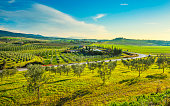 Maremma countryside panoramic view, road, olive trees, rolling hills and green fields at sunset. Casale Marittimo, Pisa, Tuscany Italy Europe.