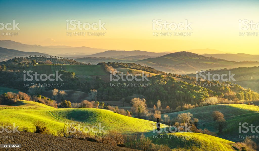 Maremma, rural sunrise landscape. Forest and green field. Tuscany, Italy. stock photo