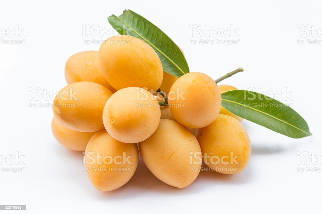 Marian plum fruit stock photo